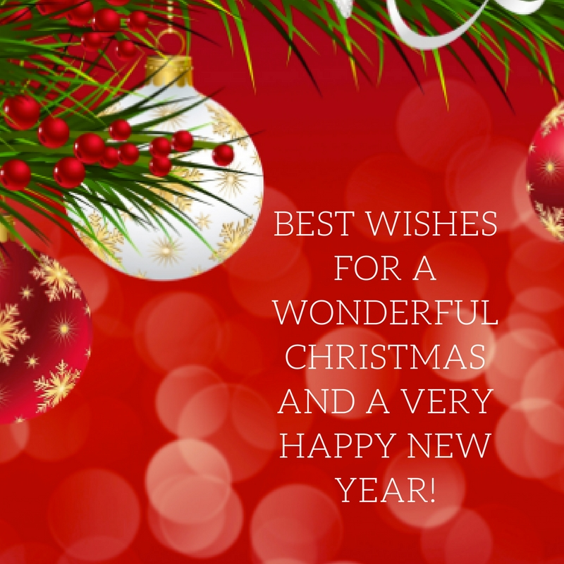 BEST WISHES FOR A WONDERFUL HOLIDAY AND A VERY HAPPY NEW YEAR.jpg