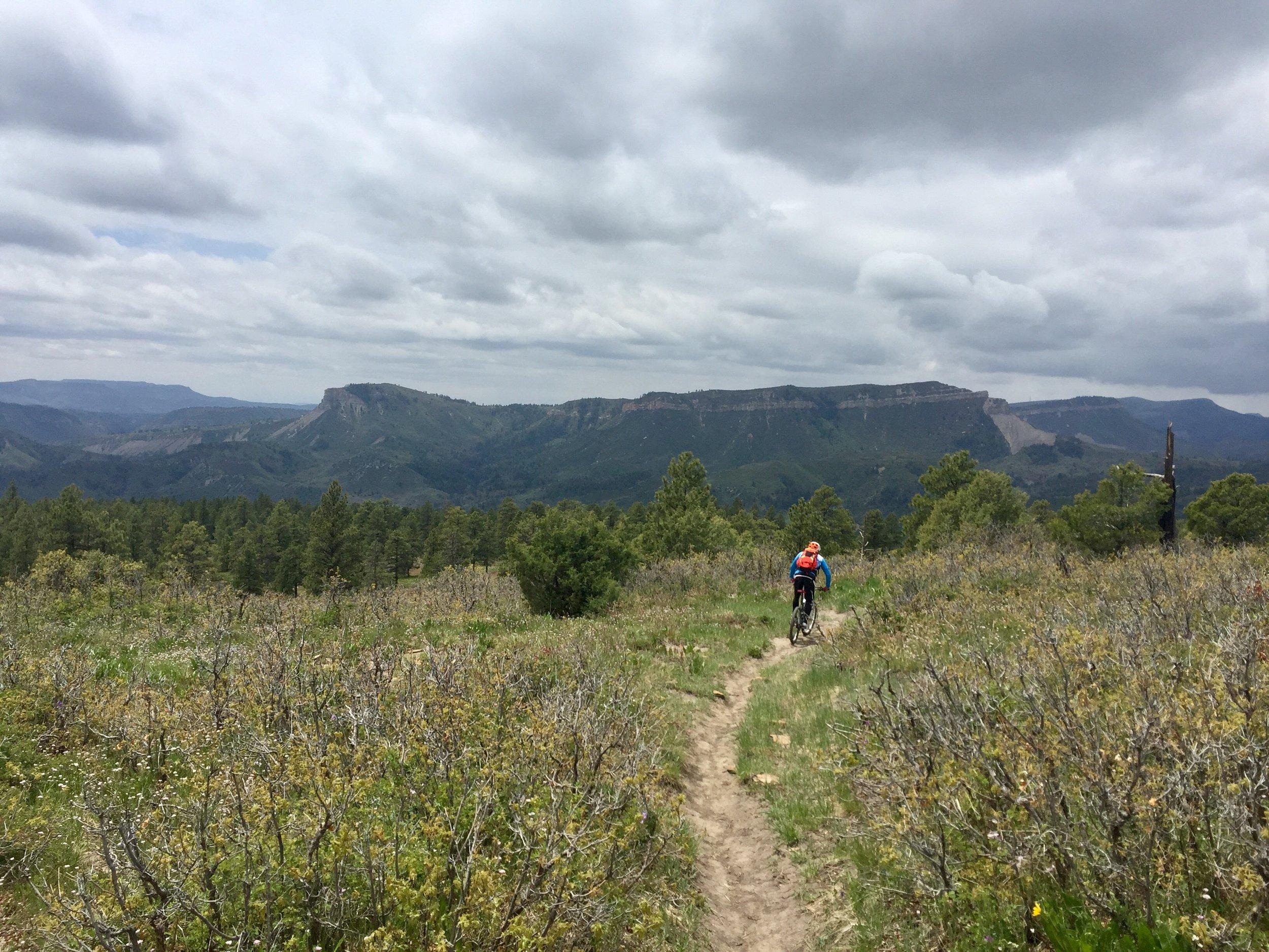 Animas_Mountain_Loop_Durango_11.jpg