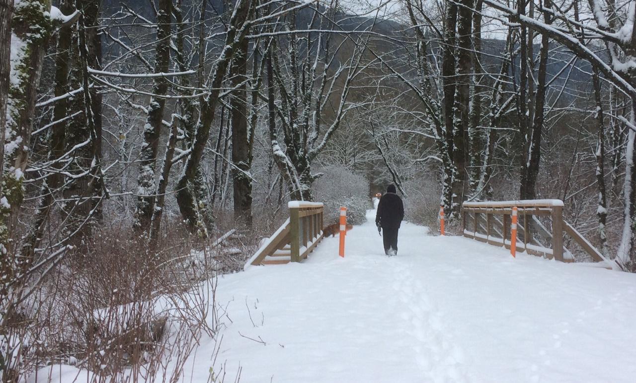 Bergman bridge in snow.jpg