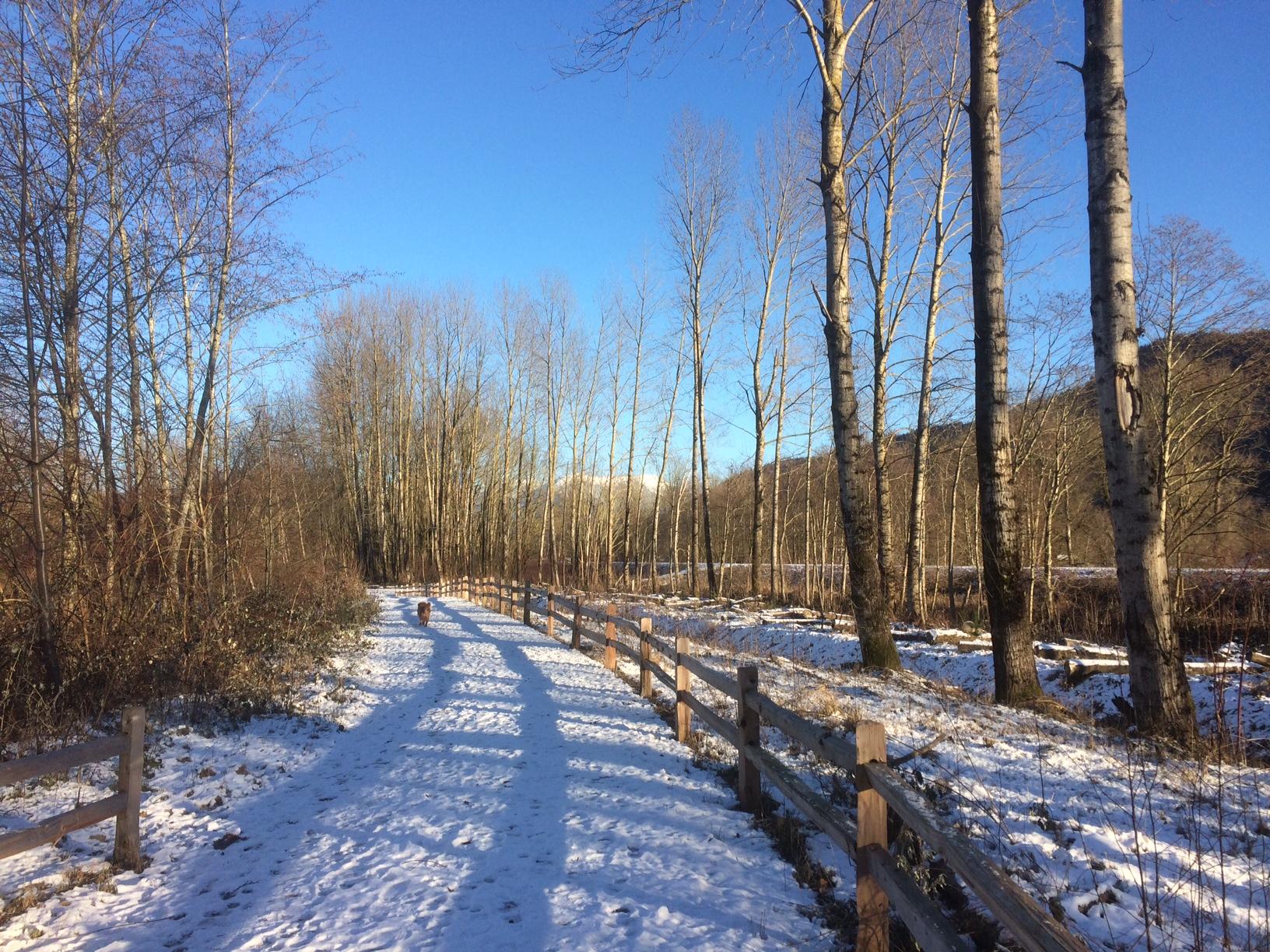 Trestle Channel Trail.JPG