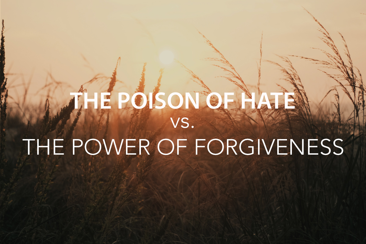 The Poison of Hate vs. the Power of Forgiveness