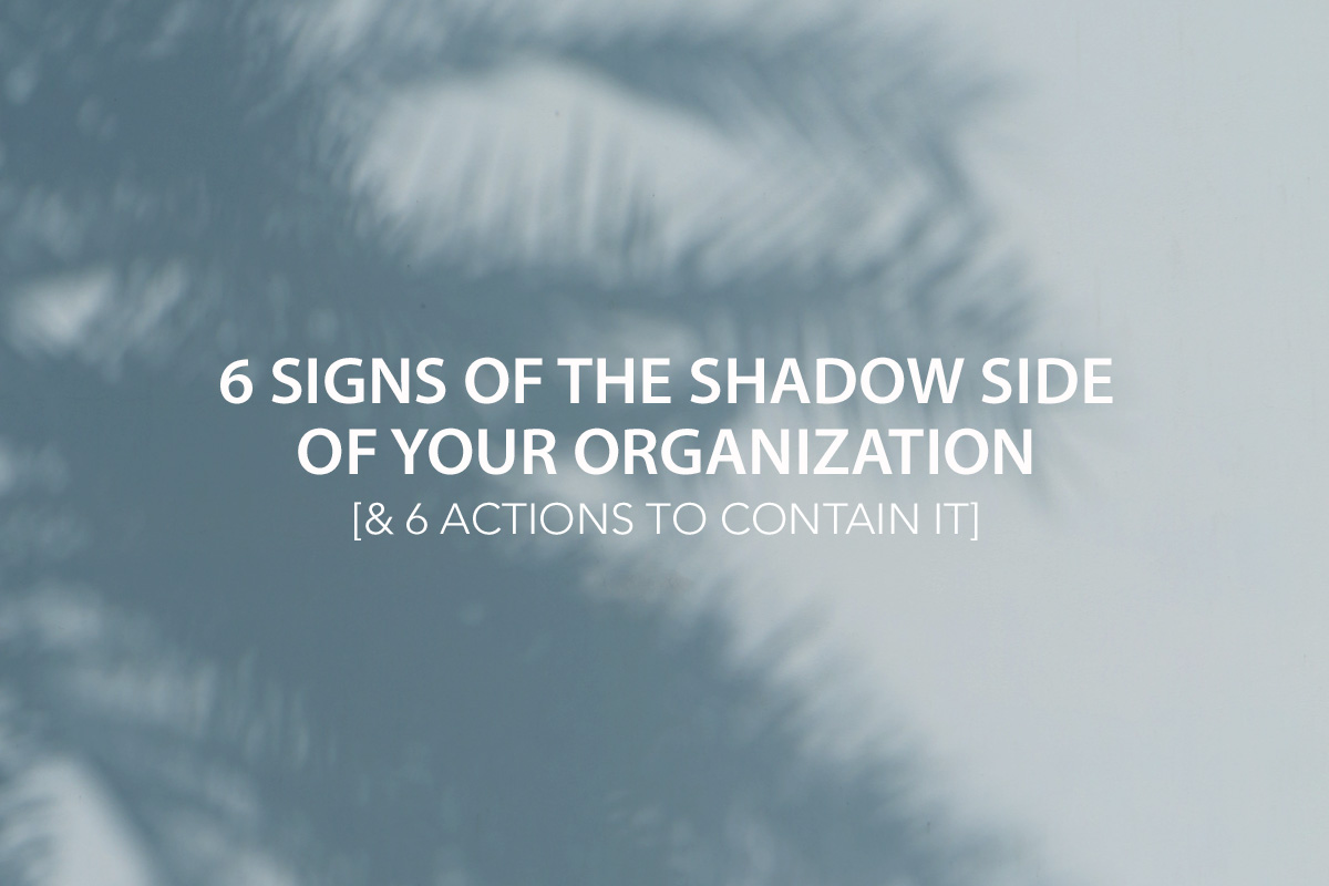6 Signs of The Shadow Side of Your Organization & 6 Actions to Contain It - The Center Consulting Group - Leadership Coaching and Consulting for Businesses, Churches, and Nonprofits