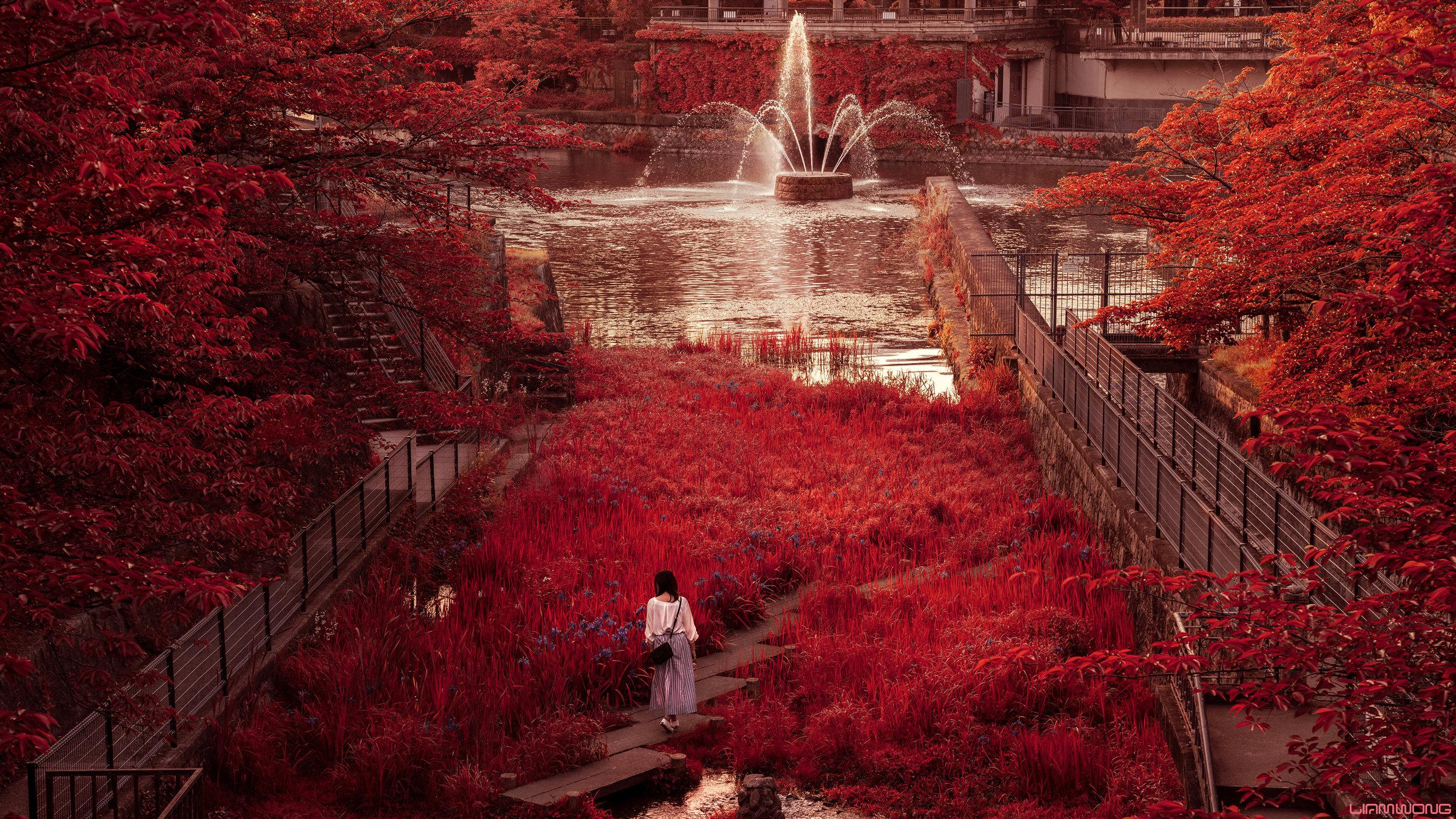 LiamWong_Mornings_In_Kyoto_RedArtboard+1+copy+3.jpg