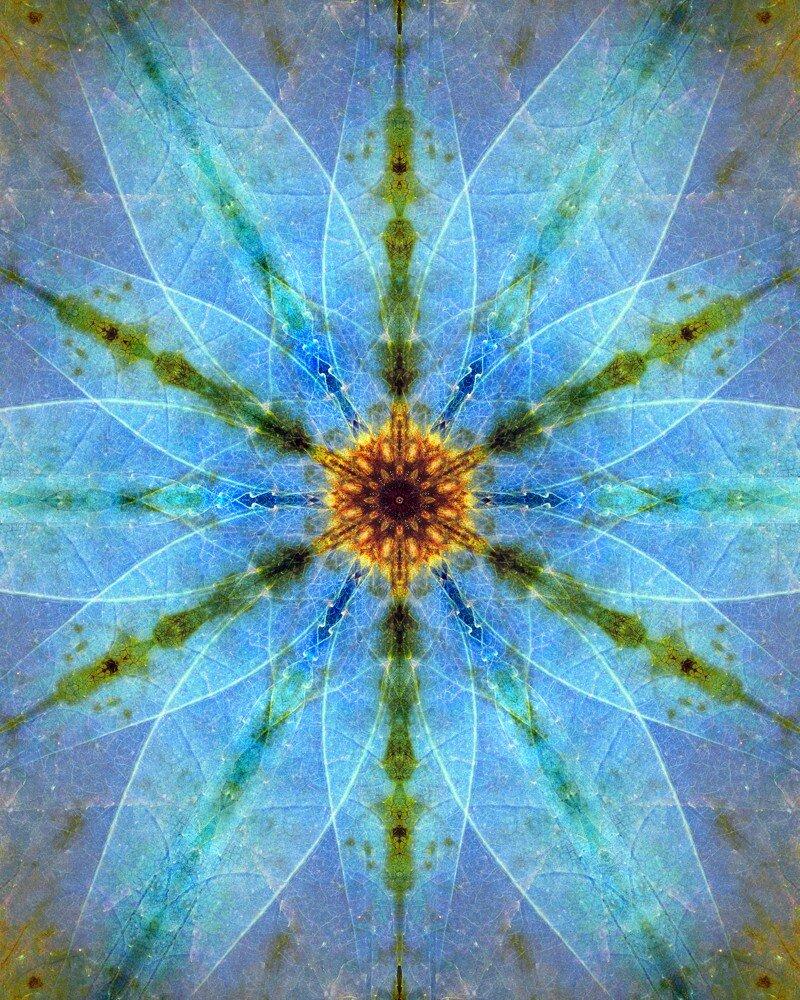 elegant leaf mirrored 6 snowflake #2 sun hide helga blue edit 2 16x20 print.jpg