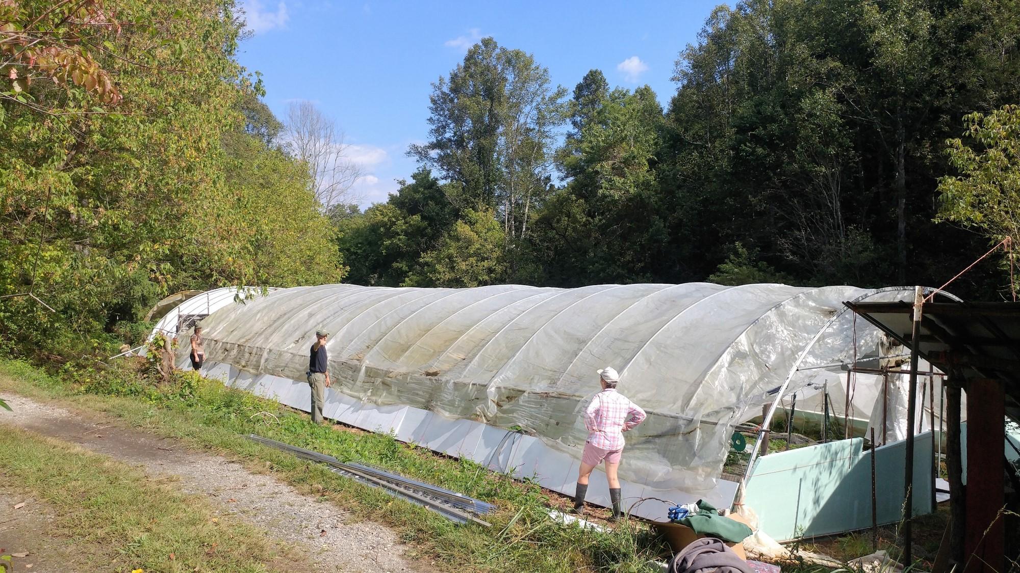 The greenhouse updates begin.