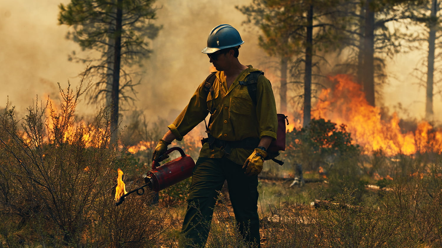 CASE STUDY: FILSON HONORS THE US FOREST SERVICE -