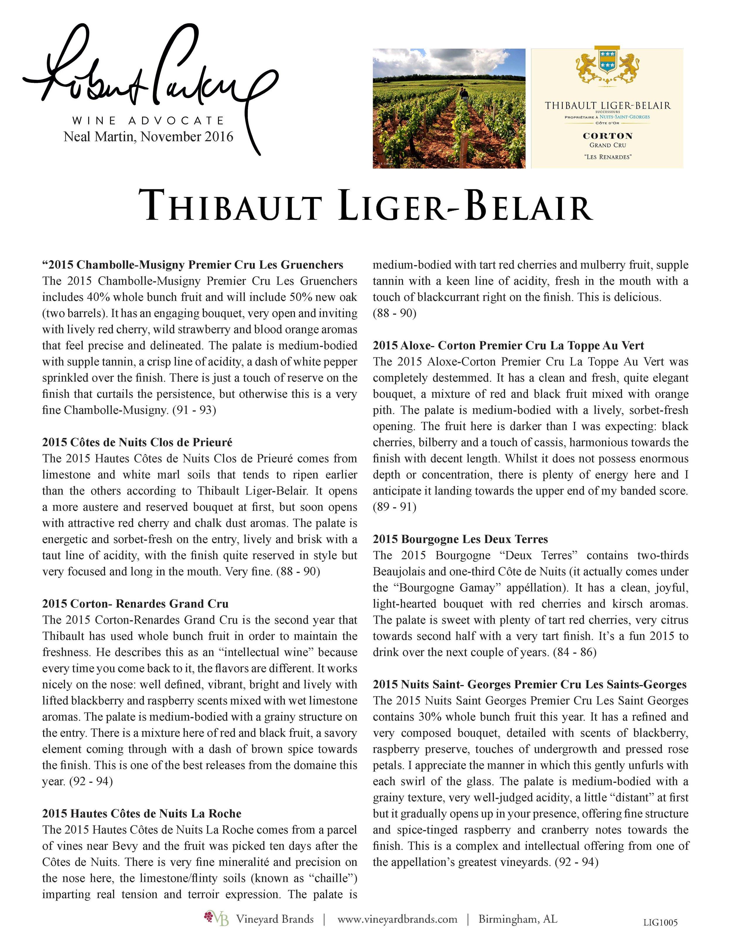 Thibault LigerBelair Multi Review_Page_1.jpg