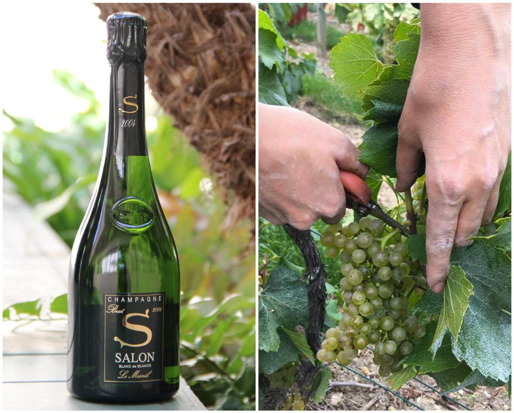 LATF USA News:Champagne Salon's Blanc de Blancs Brut 2004 Is Exquisite | 10/21/17