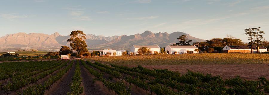 Winemag.co.za: Tim James: A Visit to Reyneke Wines | 2/16/18