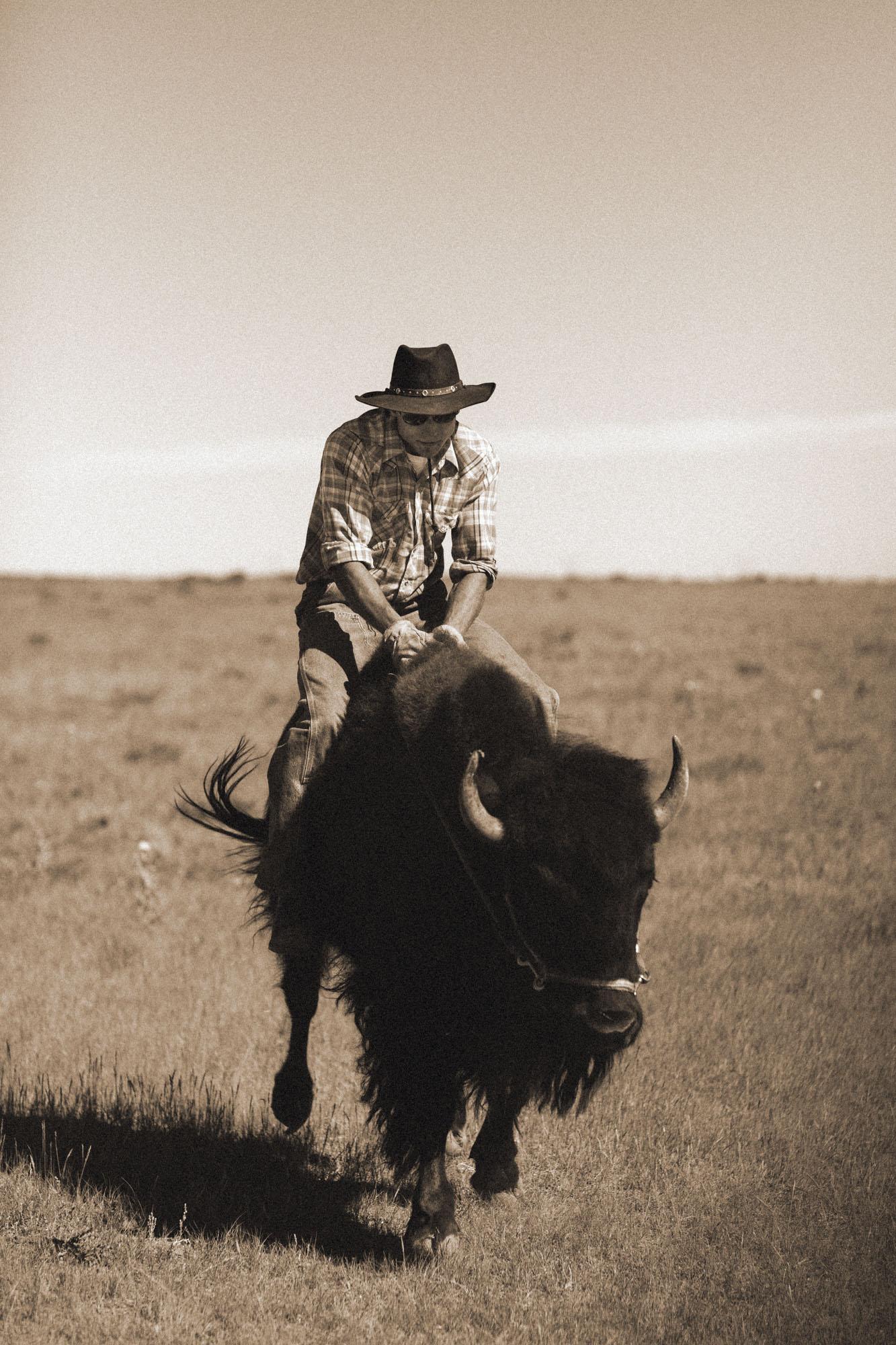 Prairie Monarch Bison Ranch