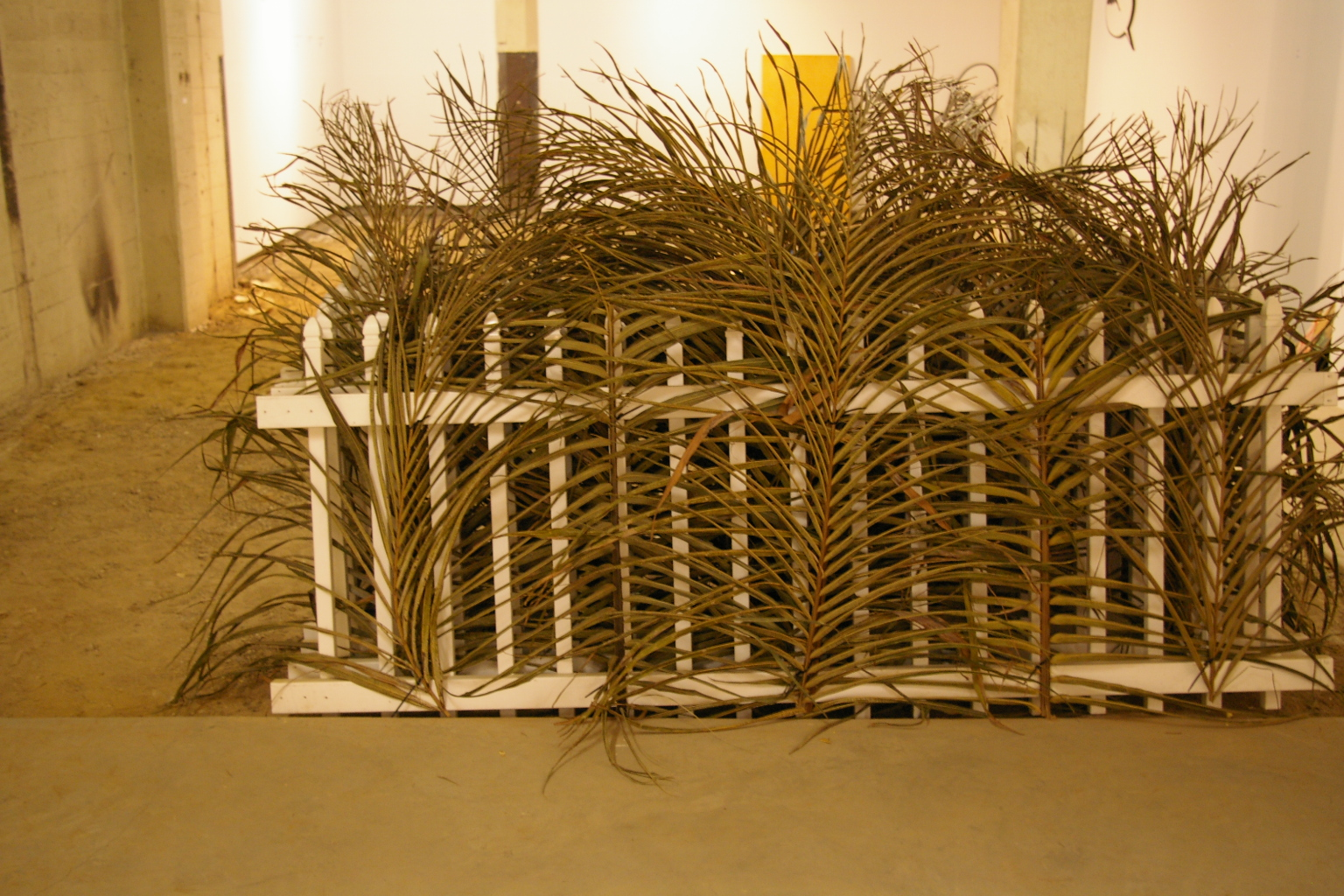Untitled 2.5'x6'x5' palm leaves7white fence installation 2011 .JPG