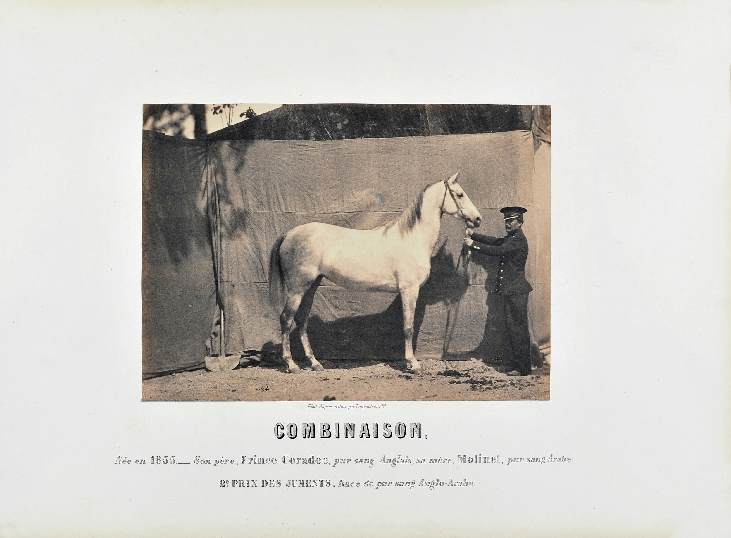 "Adrien TOURNACHON  (1825-1903) ""Combinaison"", 2e Prix des juments, c 1860  Salted Paper print from collodion glass negative, original mount  16,5 x 22,5 cm"