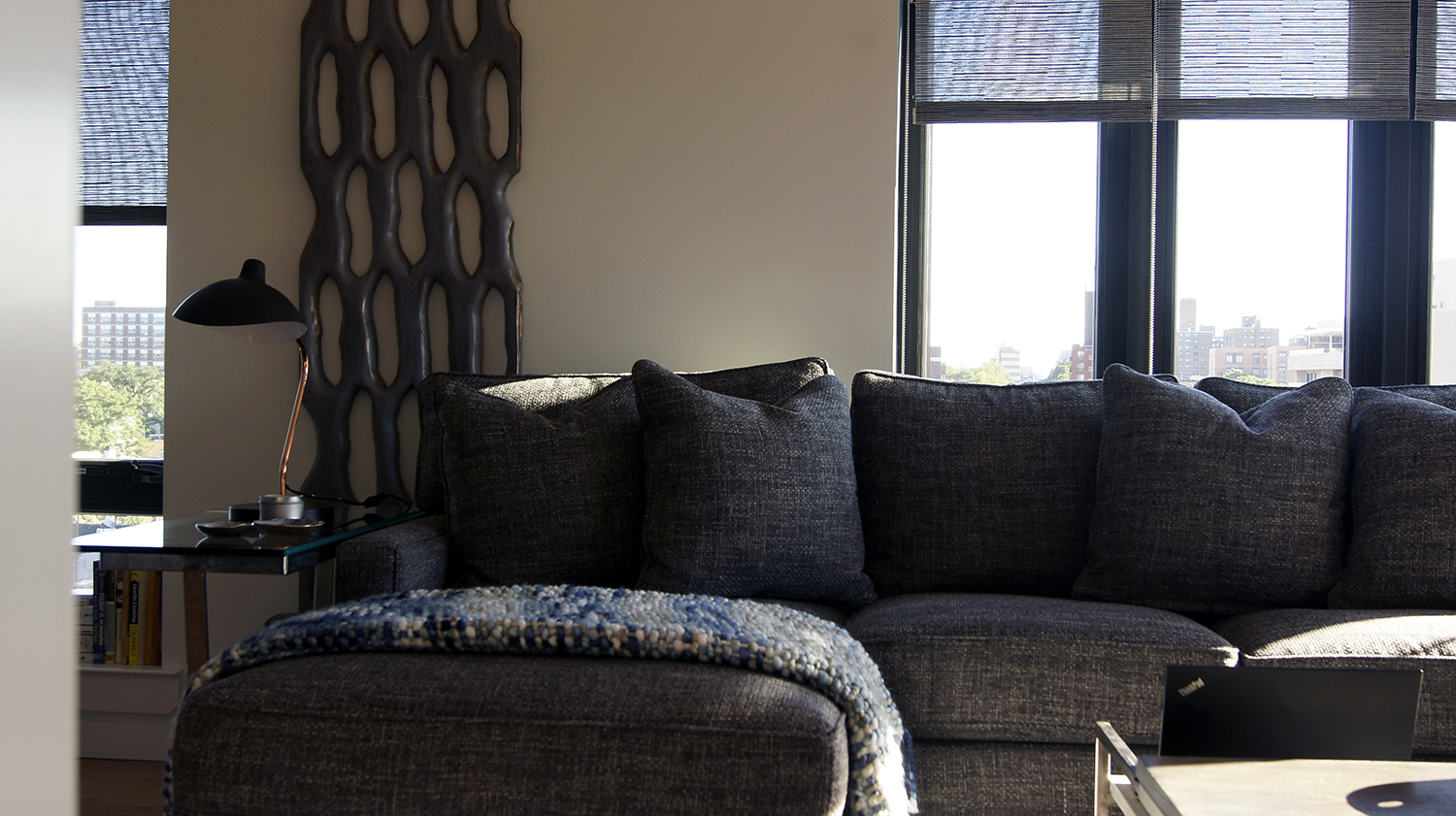 condo designer queens ny long island city 11101.JPG