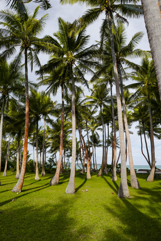 Fiji-19.jpg