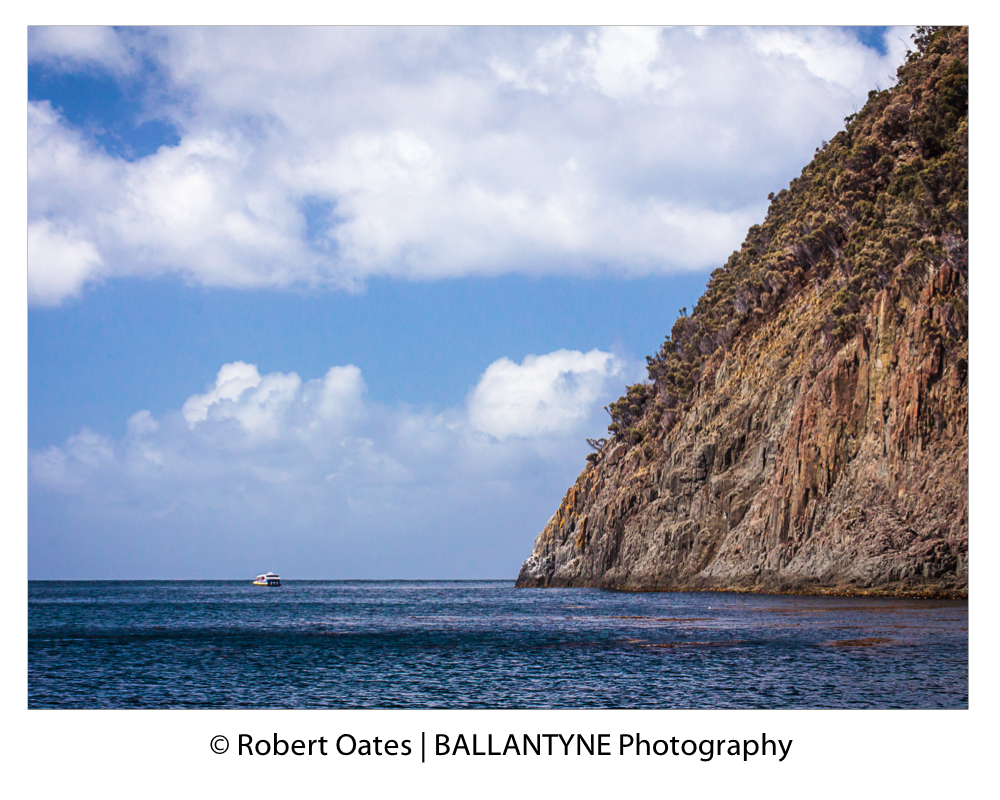 Towering cliffs, rise out of the Southern Ocean at South Bruny National Park