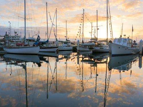 Dawn and early morning, AWBF 2013, Hobart, Tasmania