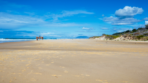 140813-New-South-Wales-Lighthouse-Beach-100851.jpg
