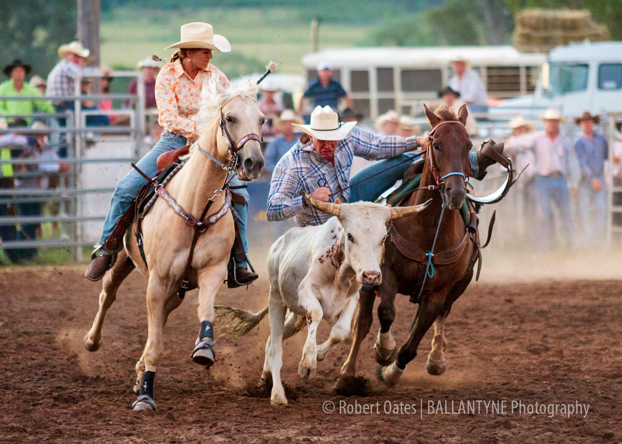 10-12-31-New-South-Wales-Upper-Horton-Rodeo-18-36-32.jpg