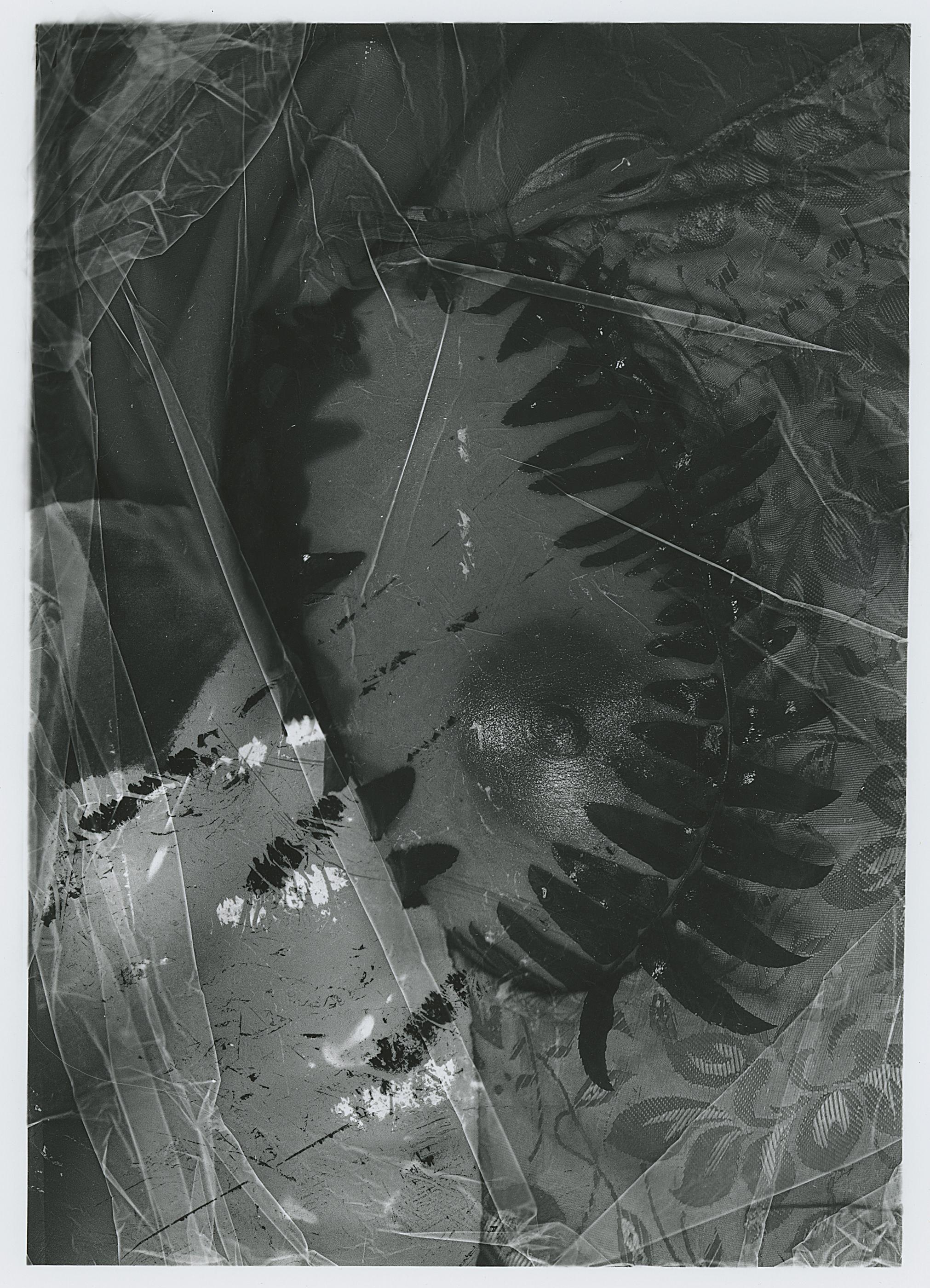 Silver Gelatin Print, 2018.  (8 x 11 in.)