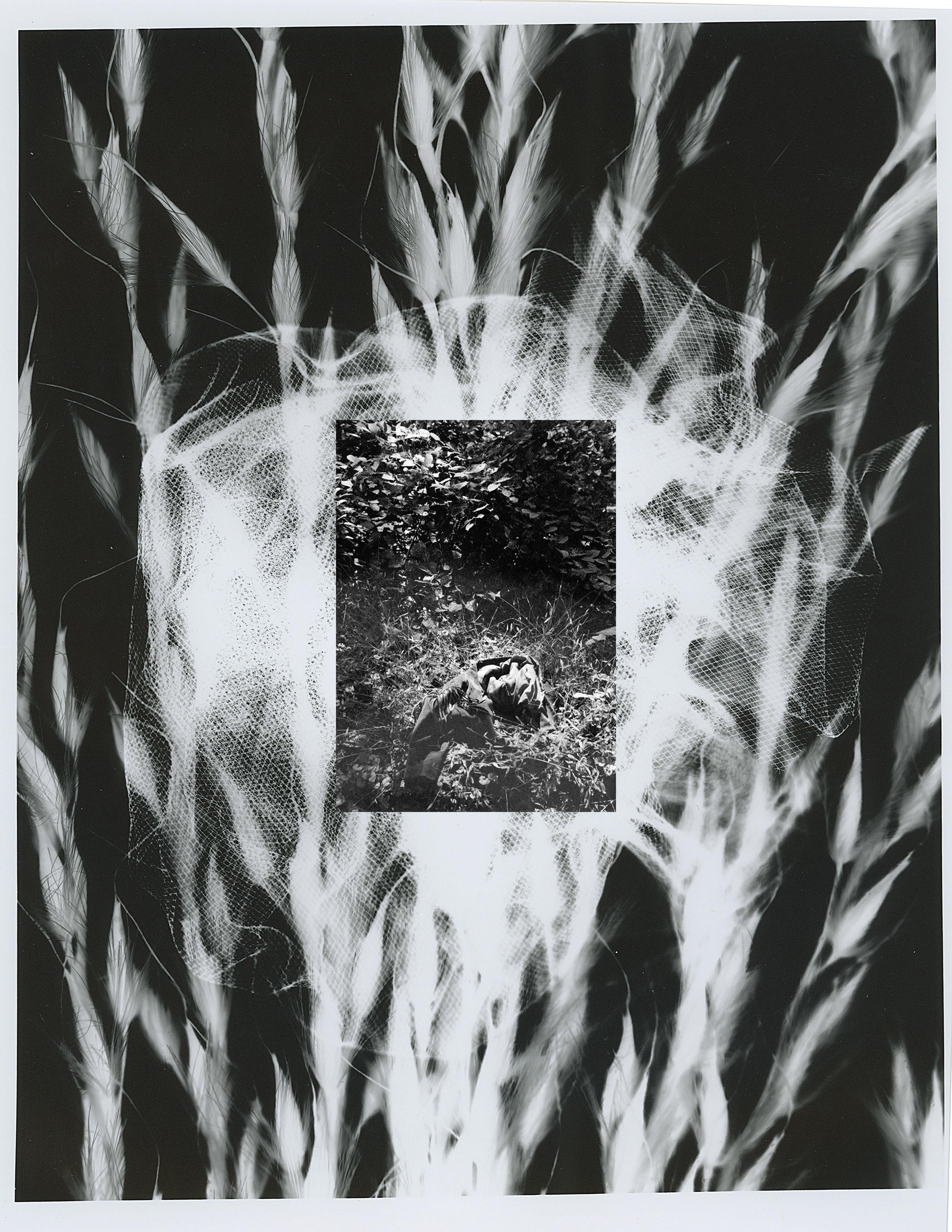 Silver Gelatin Print, 2018.  (8 x 11 in)