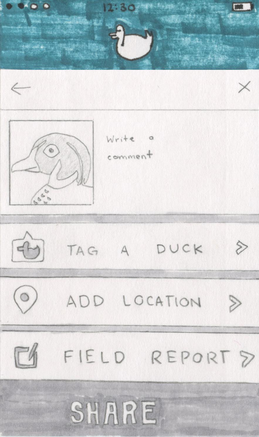 7. post duck sighting.jpg