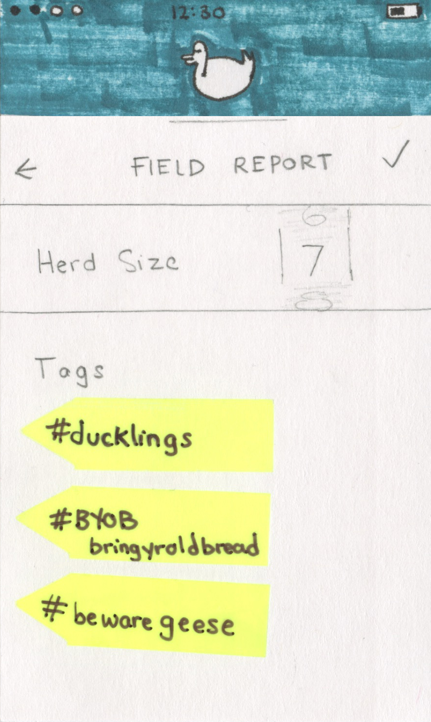 10. field report.jpg
