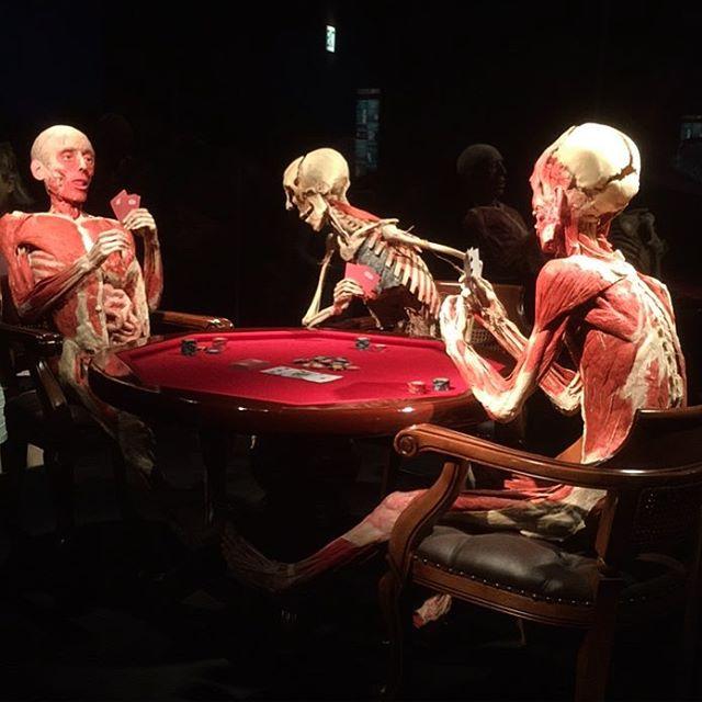 Hard to read these poker faces. #bodyworldpulse #anatomy