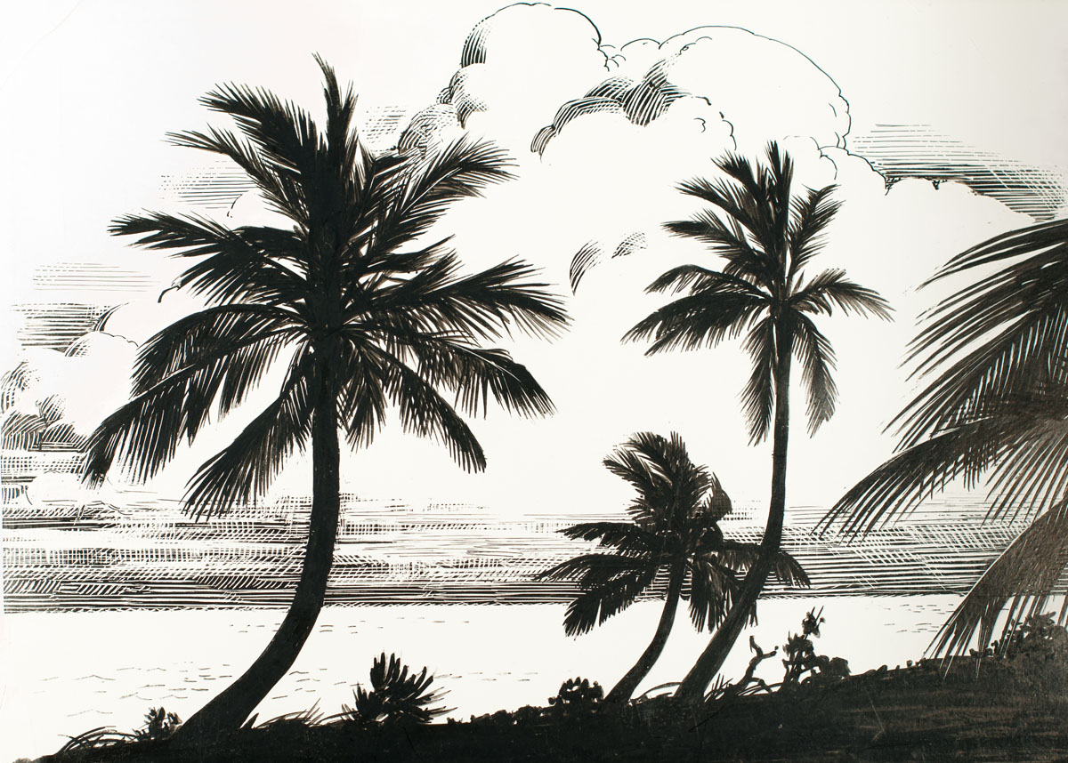 Illustration from the original  Wild America  by Roger Tory Peterson