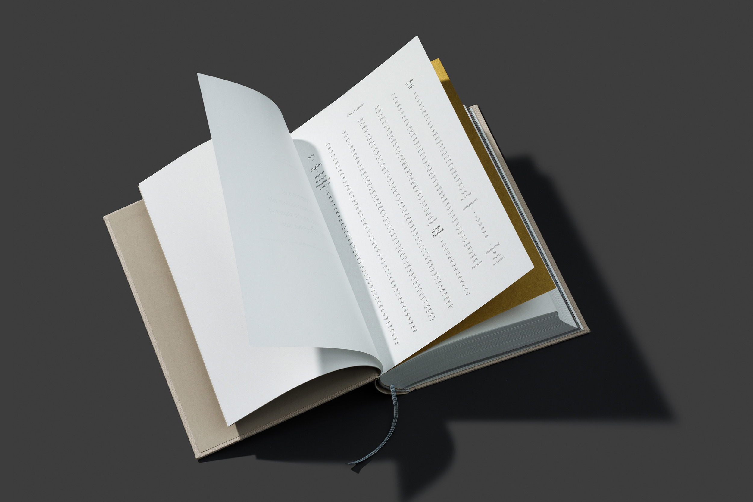 worthless_book_03.jpg