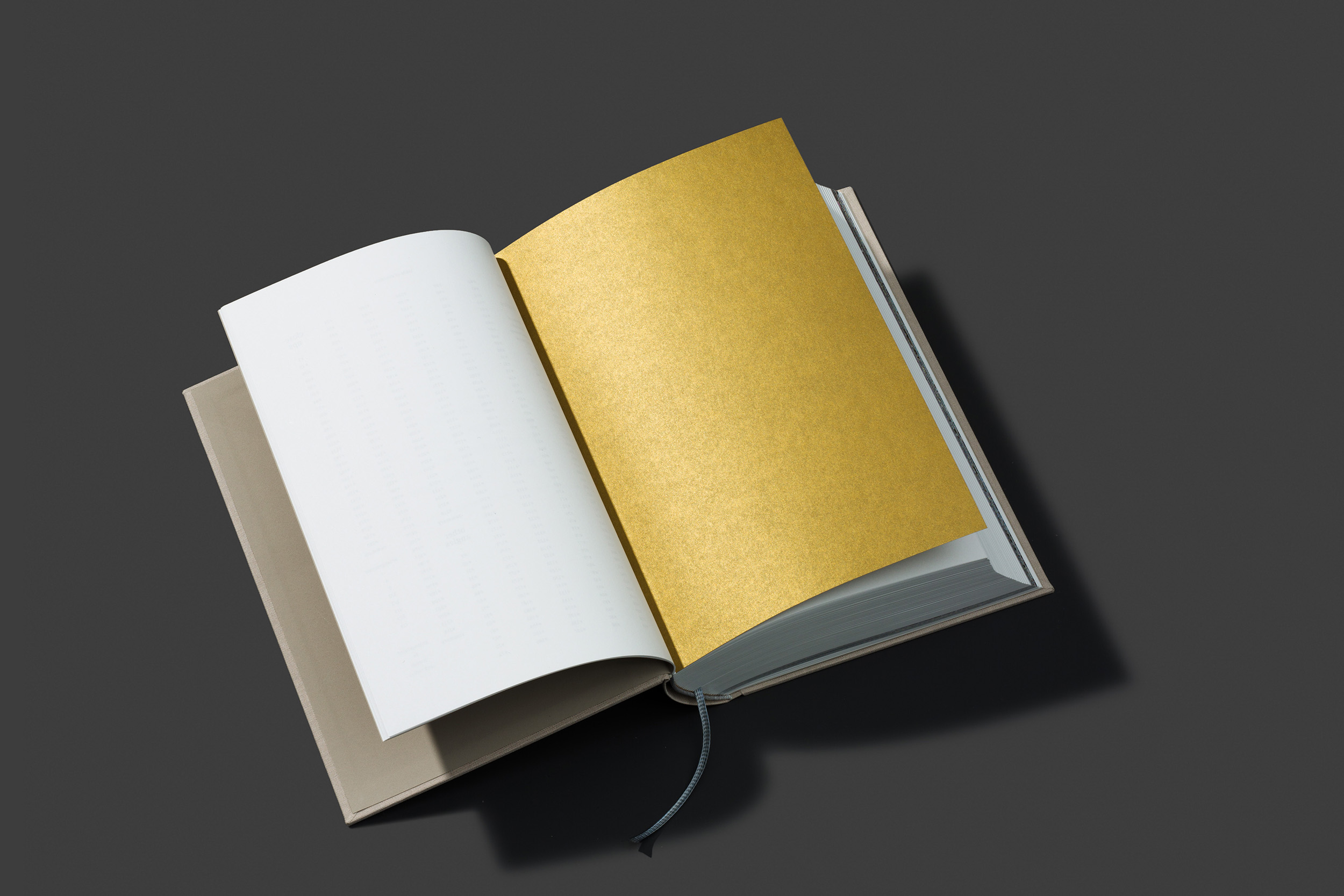 worthless_book_04.jpg