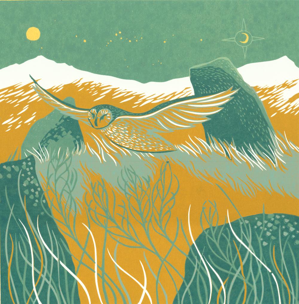 Forest Enterprise Scotland publications