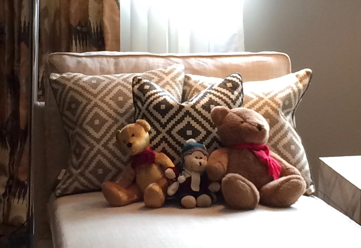 Cushions and Teddies.jpg