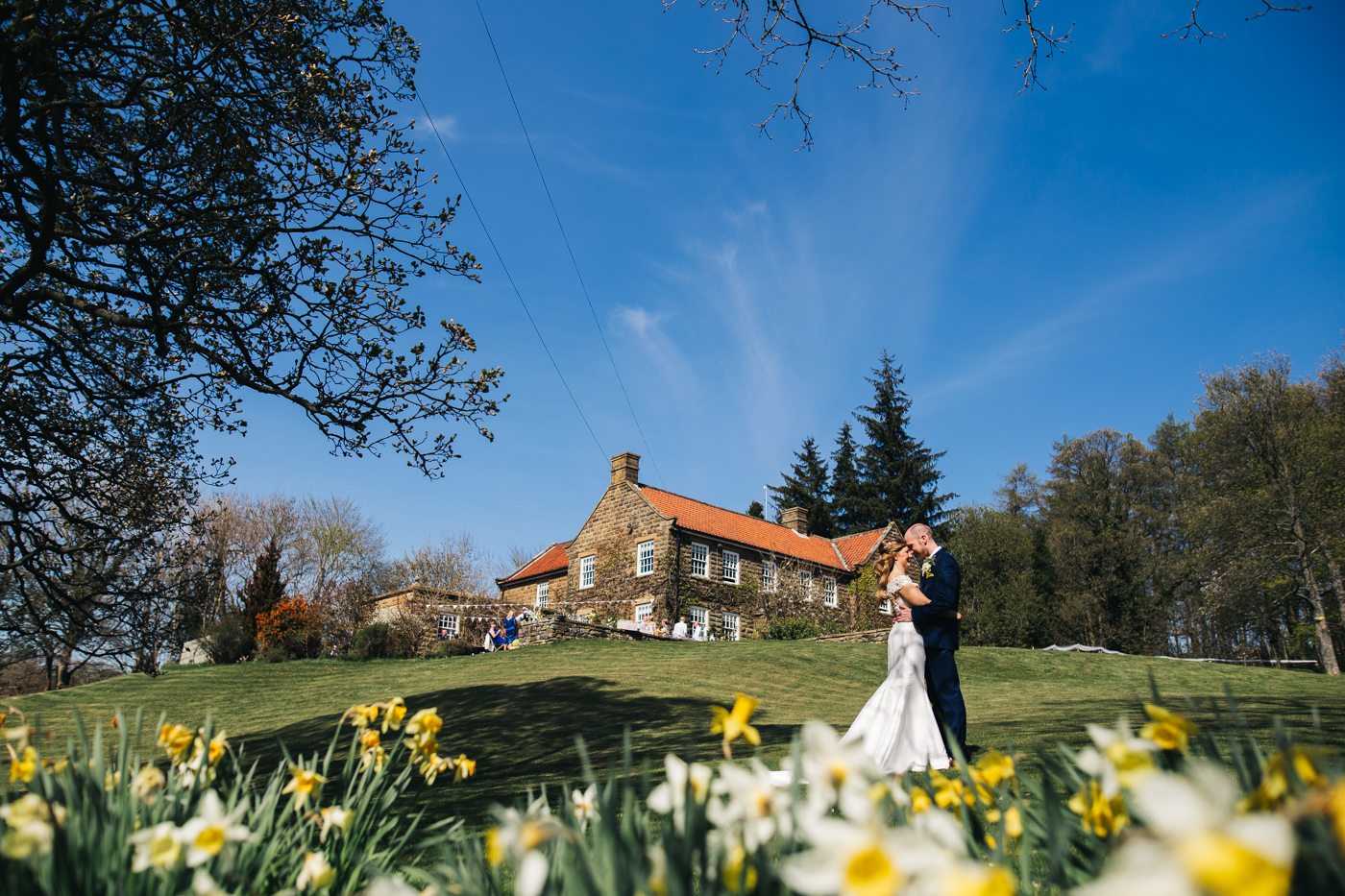 a wide shot of the couple kissing with daffodils in the foreground. wedding at laskill house north yorkshire helmsley wedding photographer north east teesside