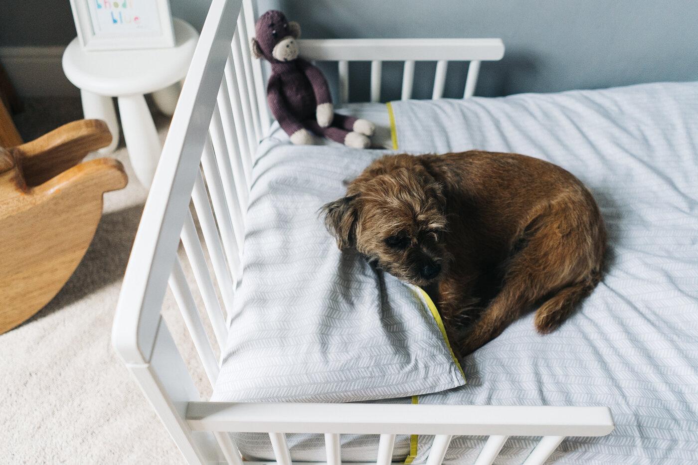 family-photography-teesside-north-yorkshire-newborn-baby-family-shoot-0022.jpg