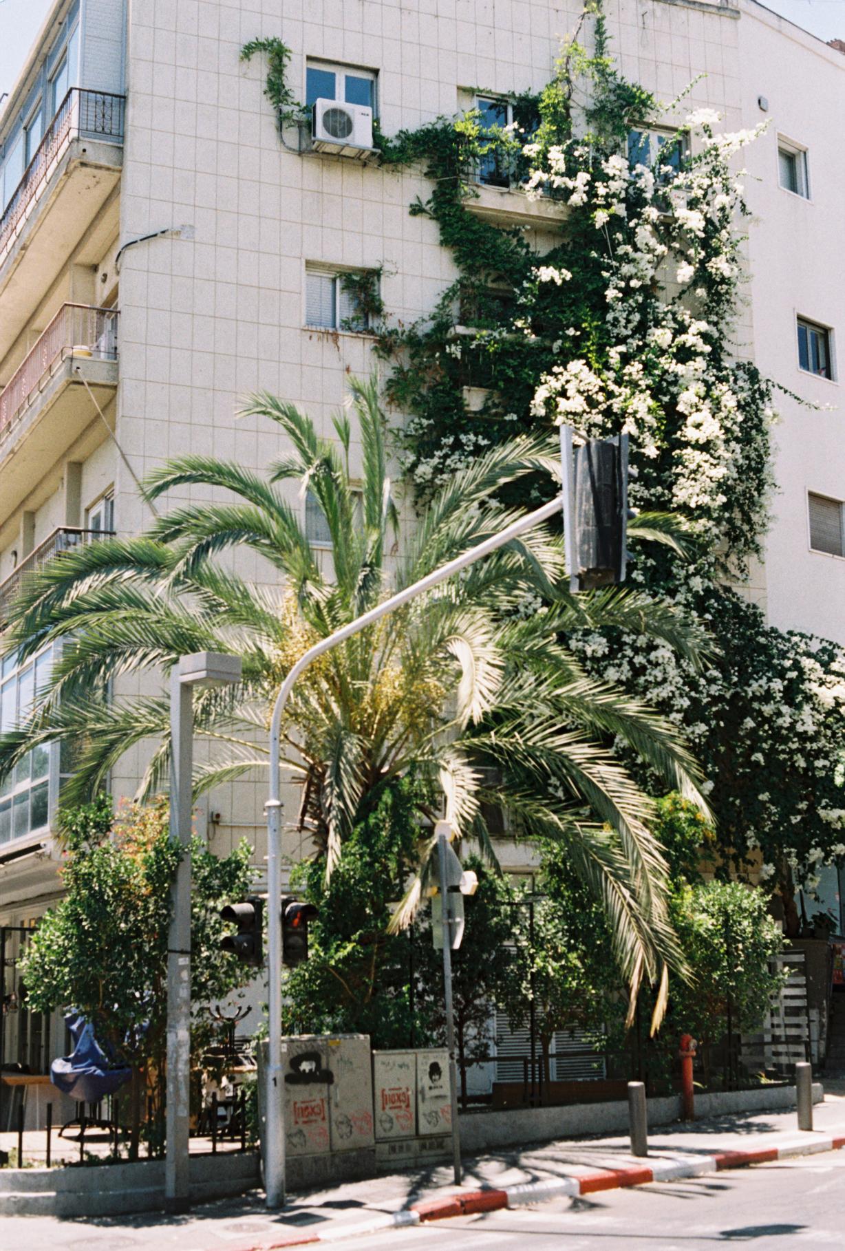 Israel-Jul16-0012.JPG