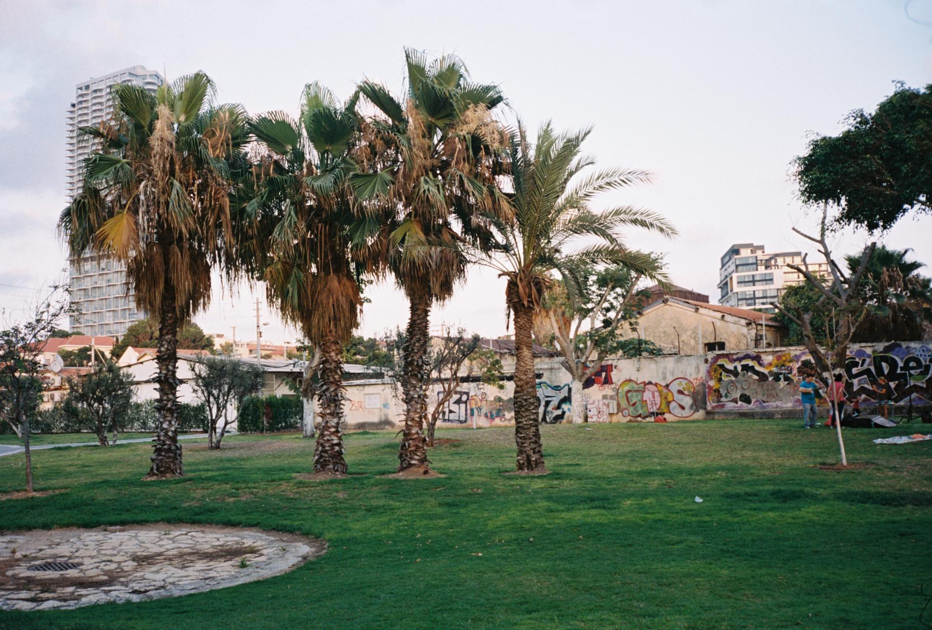 Israel-Jul16-0037.JPG