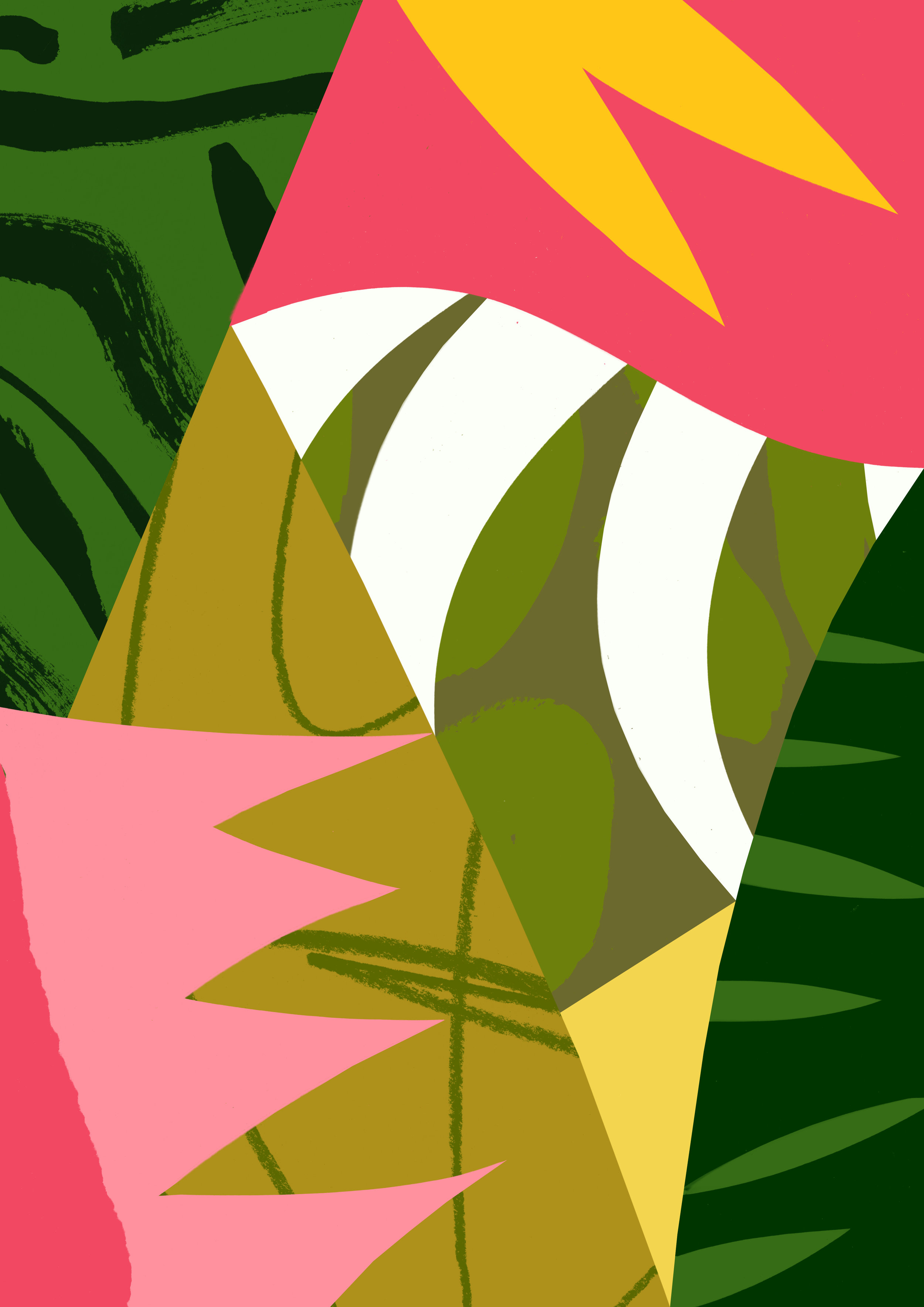 'Heliconia'  Available to licence.