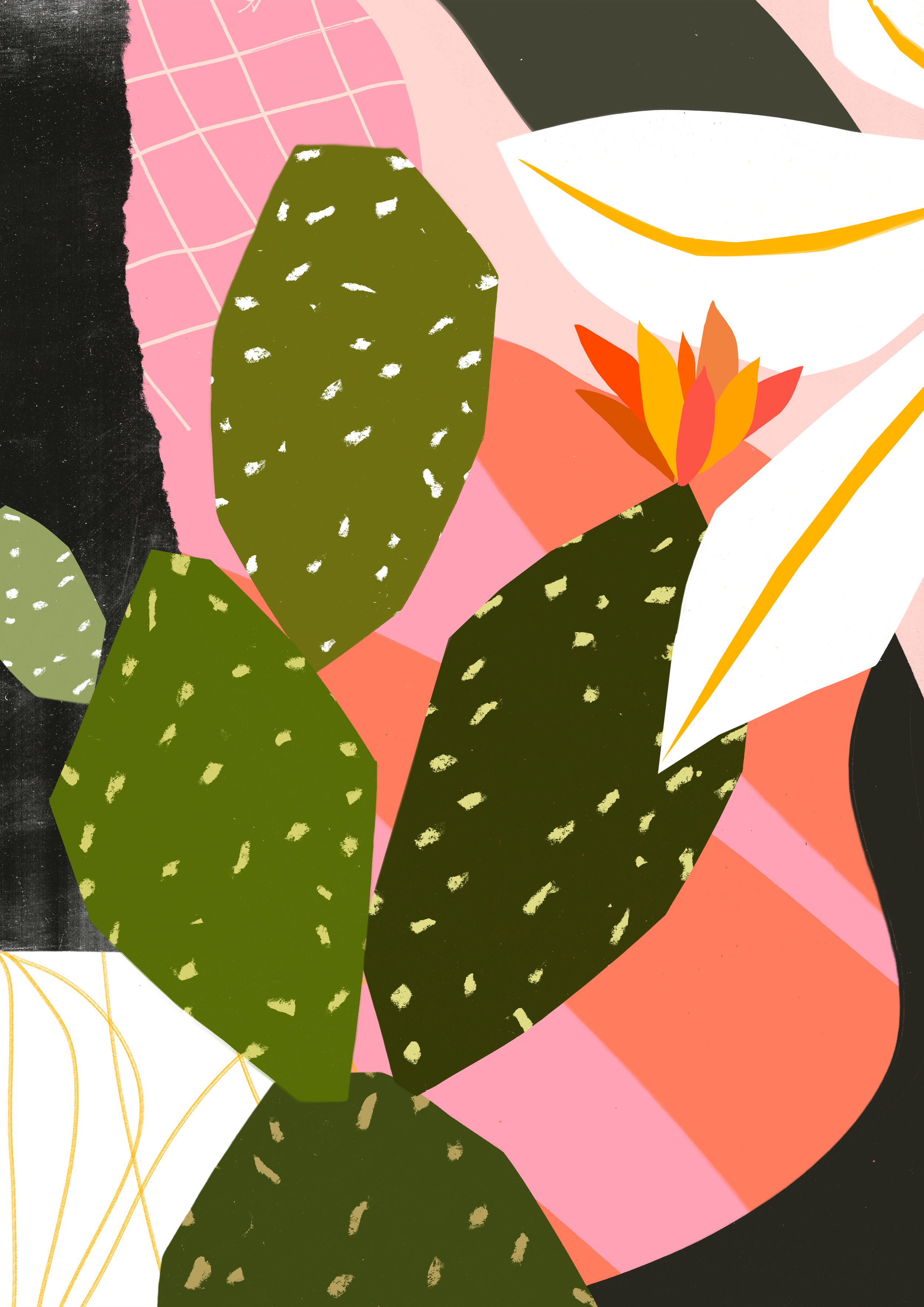 'Kew Cactus'  Available to licence.