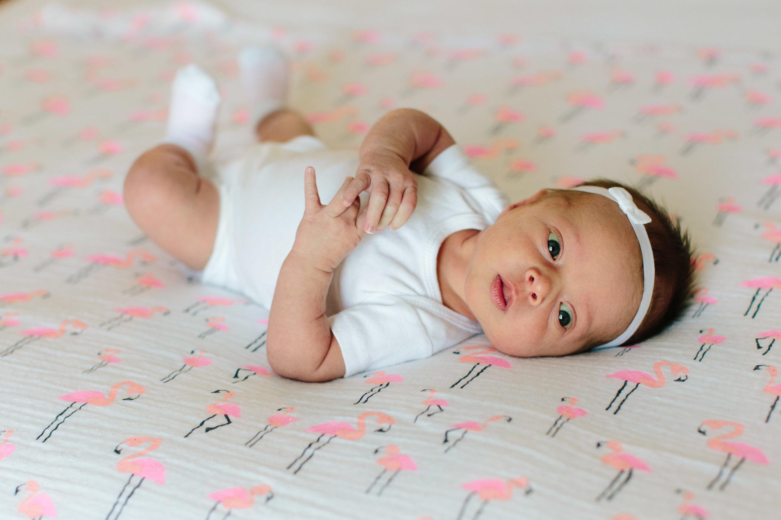 swp_vandora_newborn_0008.jpg