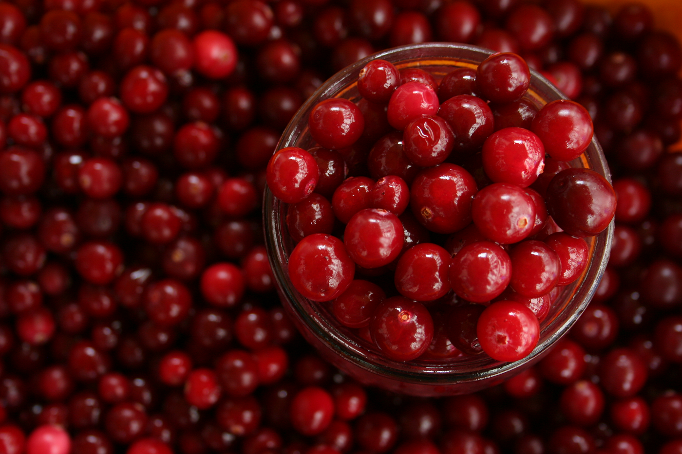 eat-cranberry-to-lose-weight.png