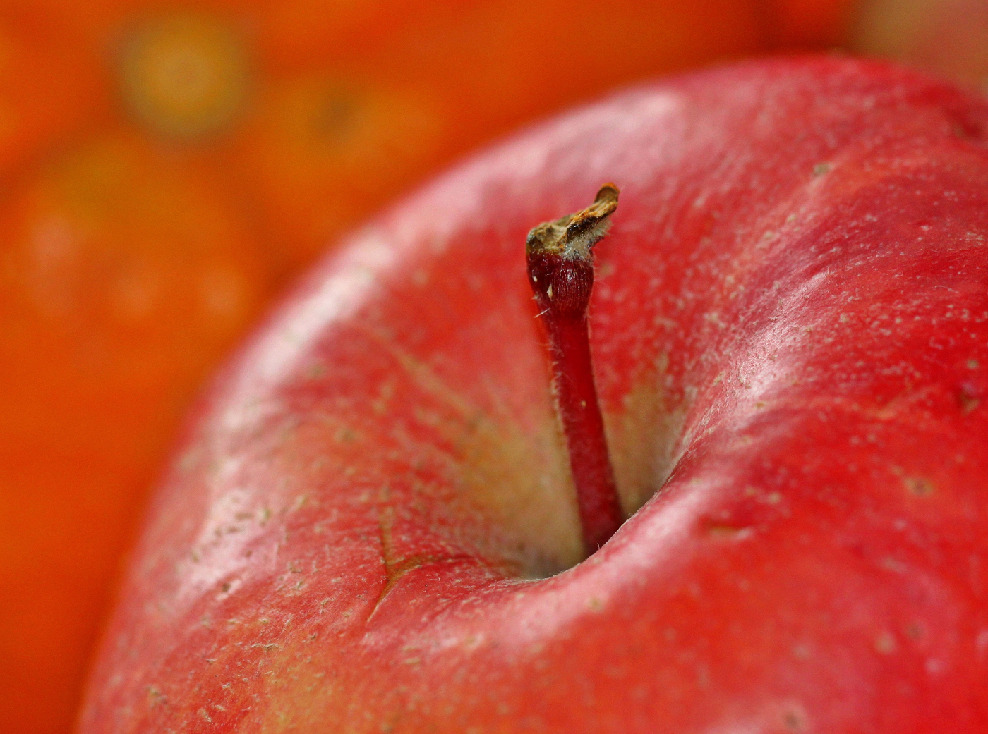 An apple a day keeps the (bariatrics) doctor away