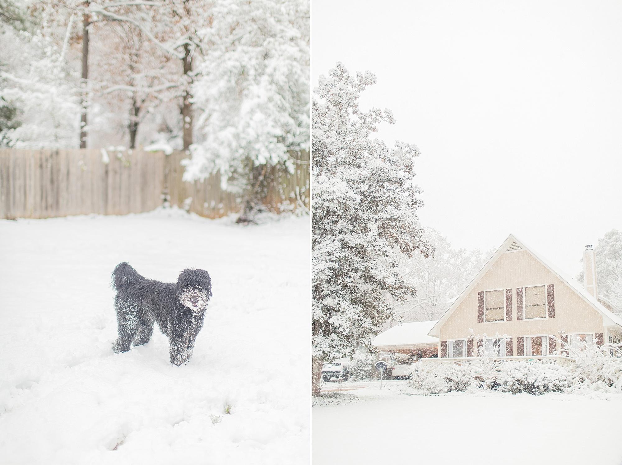 mississippi-snow-day_0005.jpg
