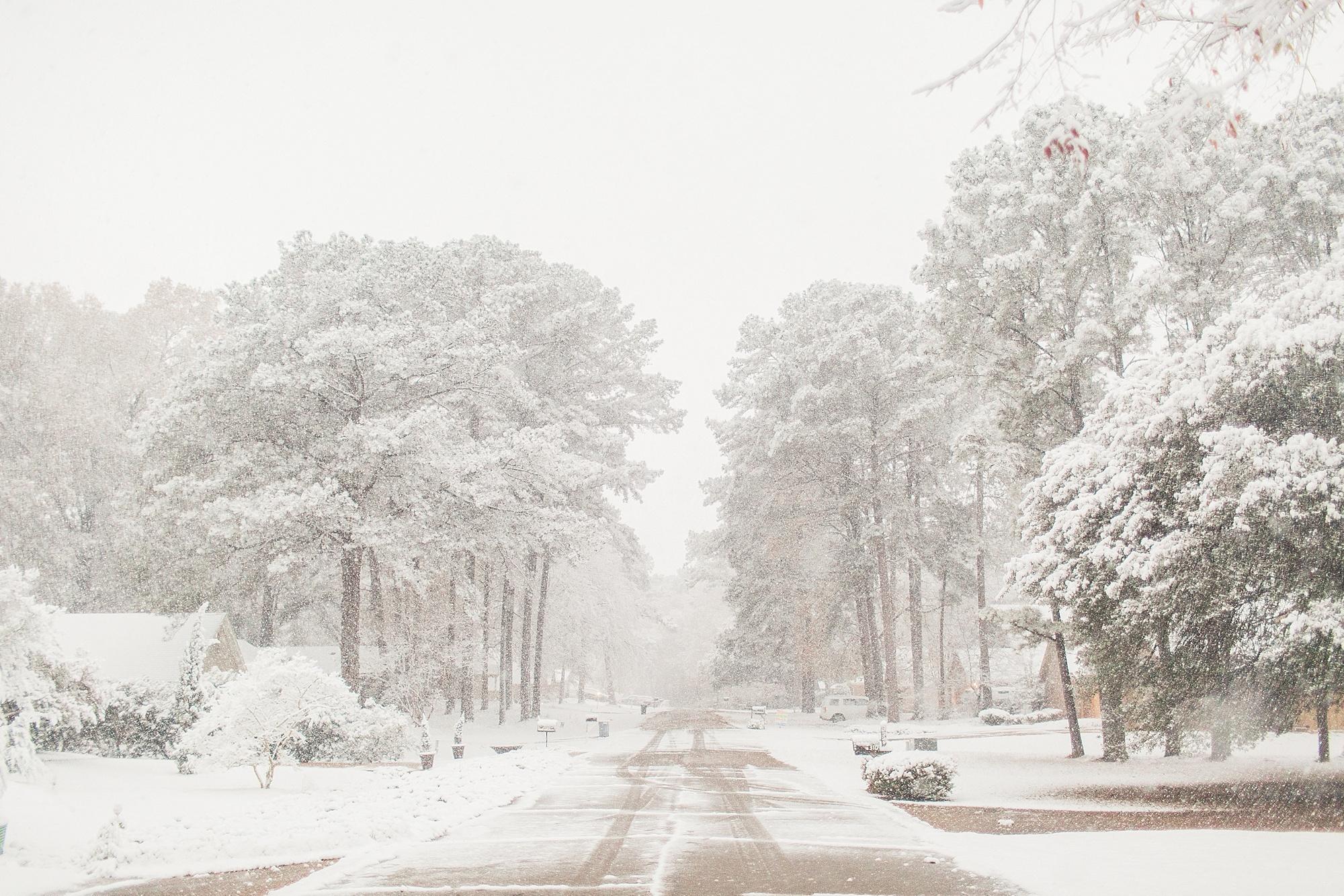 mississippi-snow-day_0008.jpg
