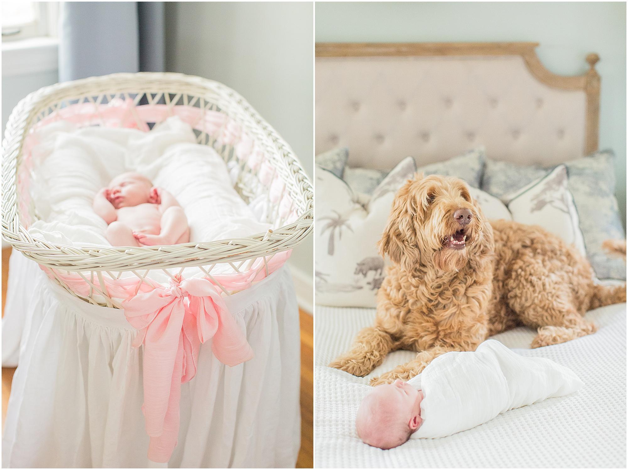 newborn-family-session-mississippi-delta_0027.jpg
