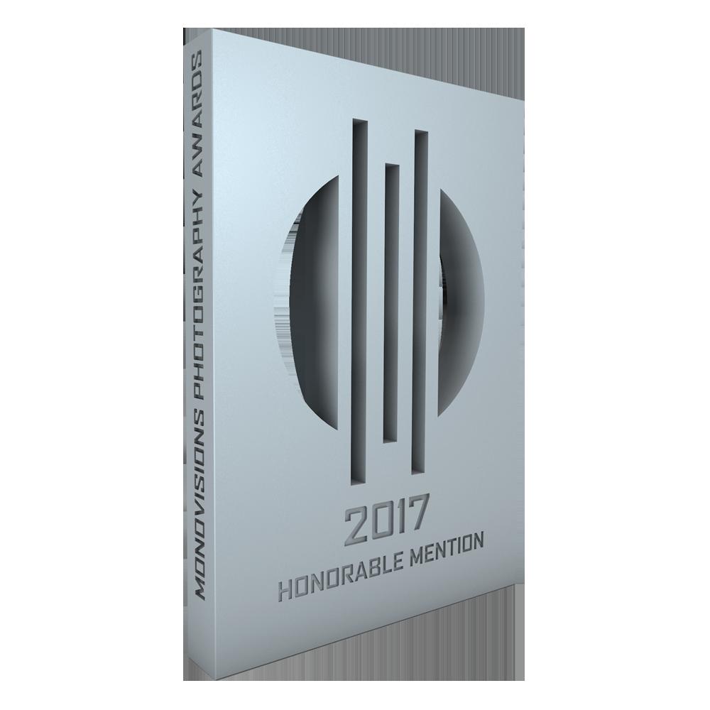 monovisions_awards_2017_hm_vlad_maltsev.png