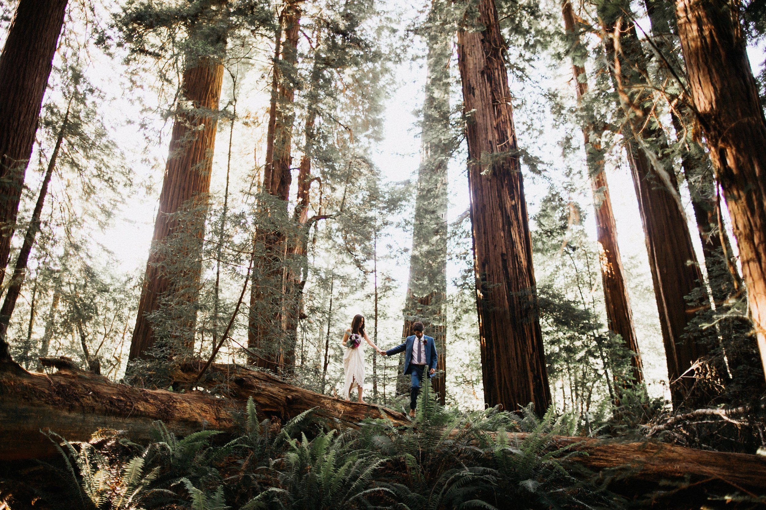 Luna Elopement in the Redwoods - Southern Bride Magazine