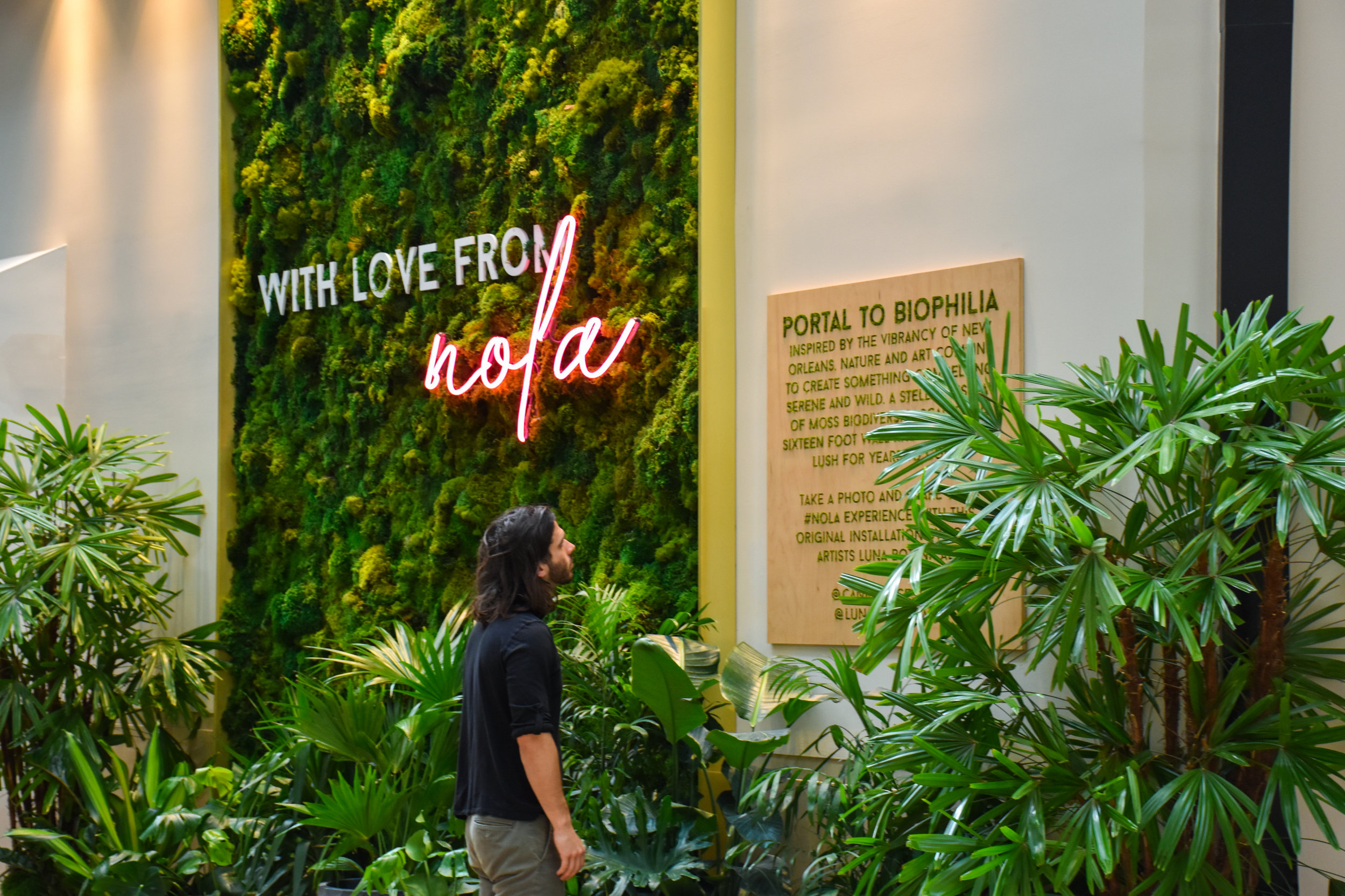Portal to Biophilia - CREATING A LANDMARKThis original Luna Botanicals art piece was designed for Canal Place, in the heart of New Orleans. By design, since its installation, thousands of photos interacting with Portal to Biophilia have been posted by locals, tourists and celebrities alike.