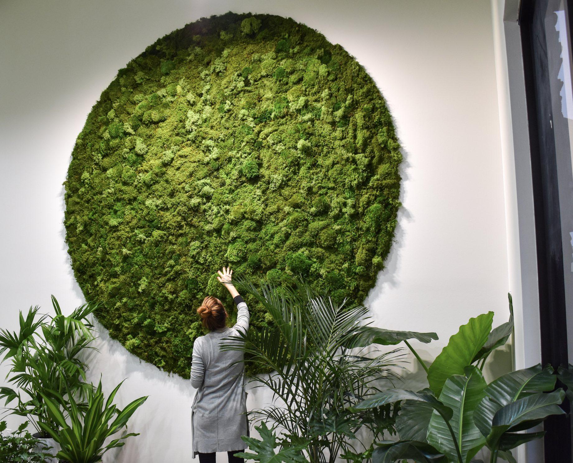 Bossier Moss Wall Jeanne.jpg