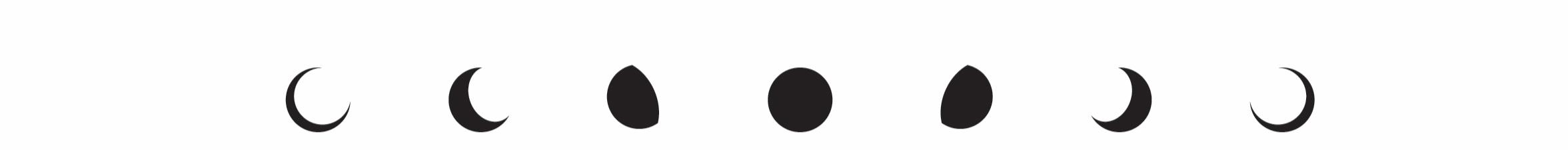 Logo+Iterations-03.jpg