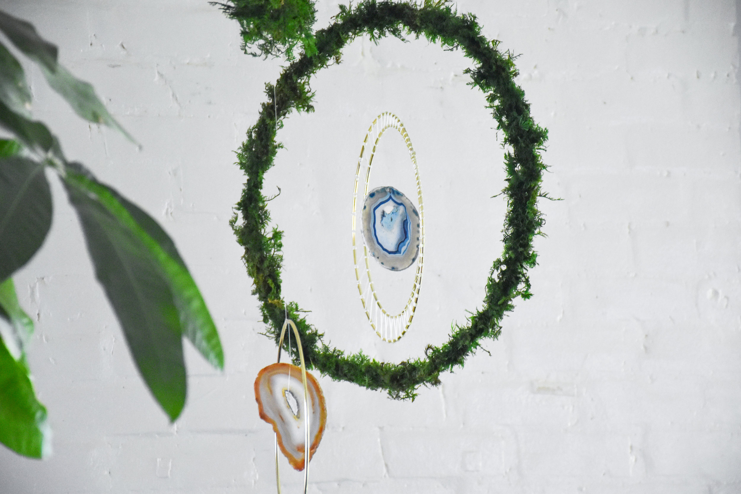 LUNAR RINGS - Escape into this portal of lushness. A valley, dense forest or an unknown overgrown world...this moss wall is meant to remind you of those natural places that ignite a sense of peace. Sparkling crystals add extra magic to this vibrant moss.